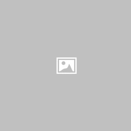 Cenni storci - Il Rotary nella storia di Novi